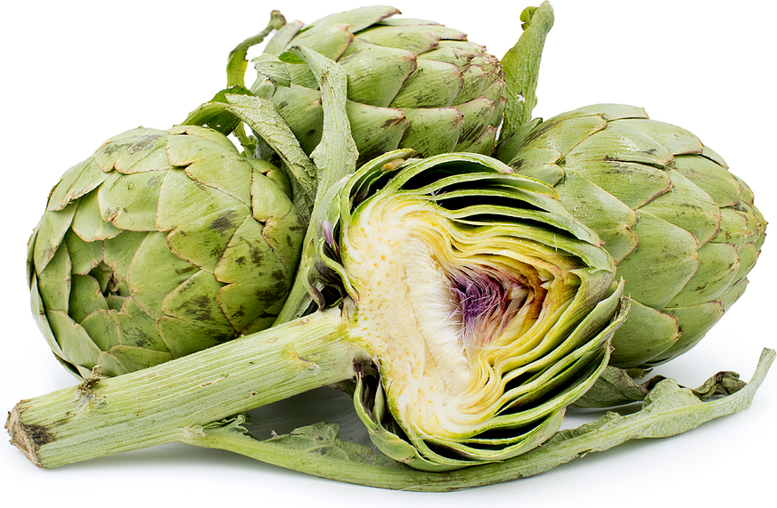 Artichokes Promote A Better Overall Gut Health